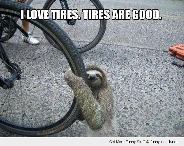 funny-sloth-hugging-bike-biycycle-tire-cuddling-pics